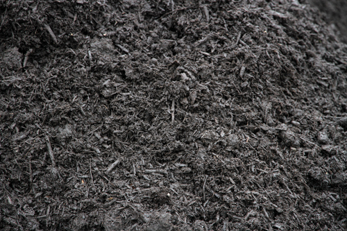 Composted bark mulch, black