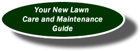 New Lawn Guide