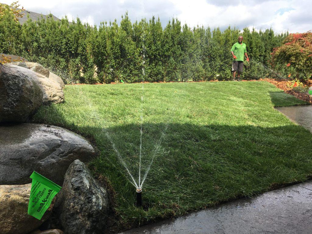 lawn sprinkler / irrigation system