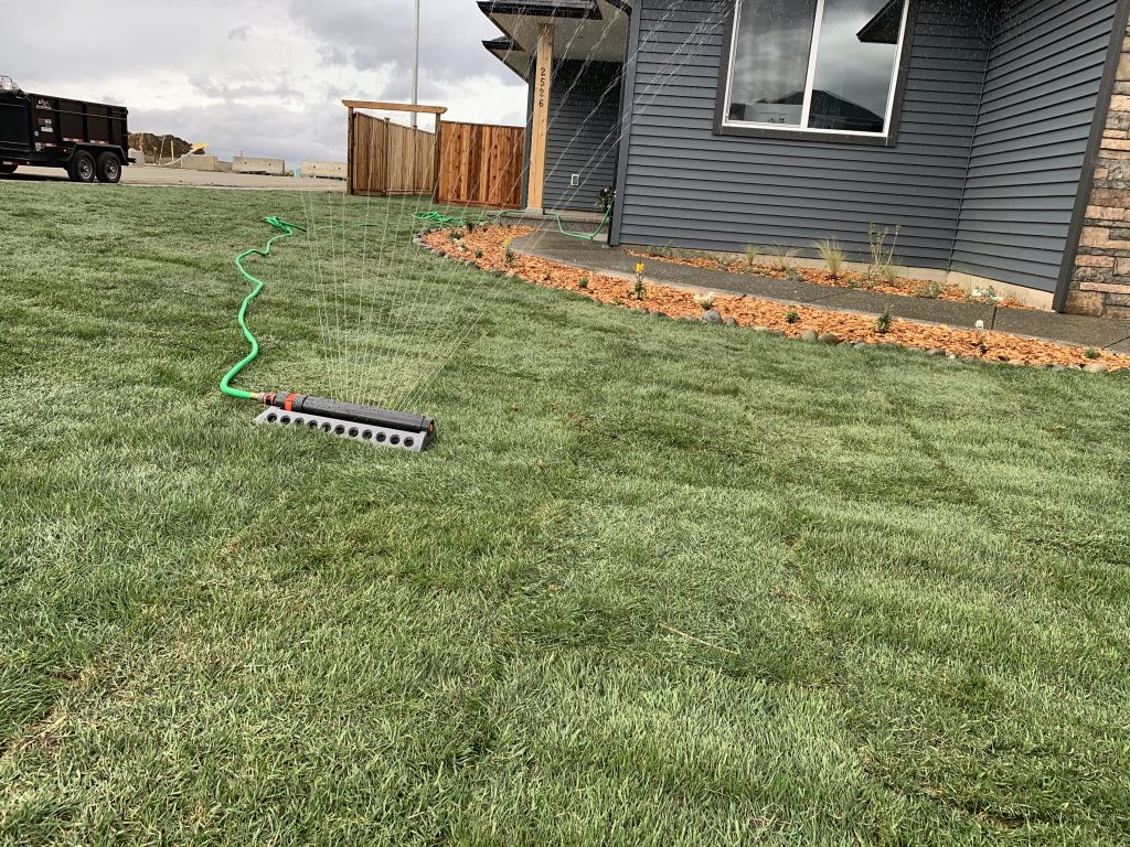 Choose a sod based on your usage and environment of your yard.