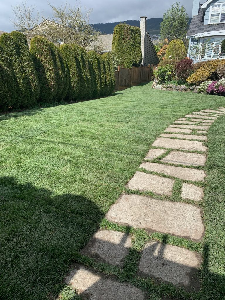 North and West Vancouver Sod Installation for a new lawn