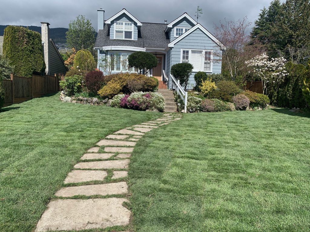Sodded lawn in West Vancouver