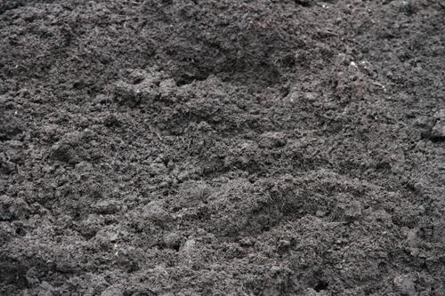 Garden Blend Soil
