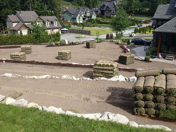 Pallets of sod