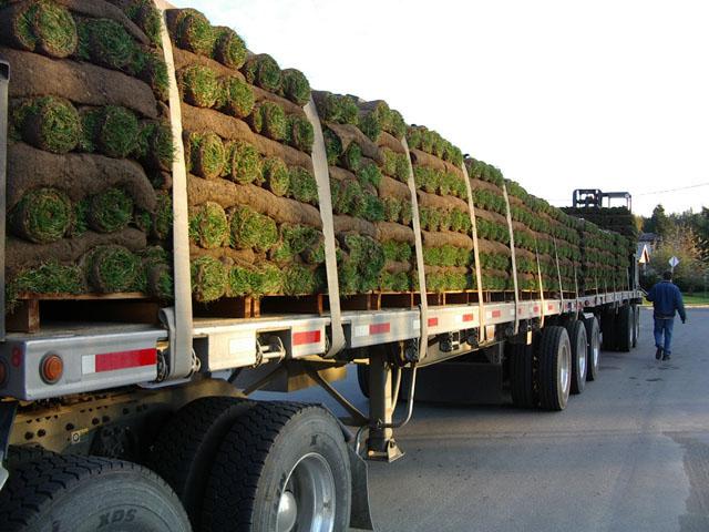 sod farm truck