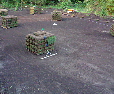 preparation for a new lawn